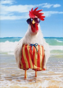 cd10436-rooster-wears-swimsuit-birthday-card